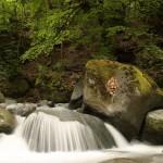 cascade - Brides les bains